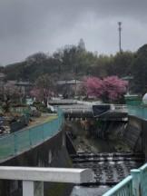 神奈川区菅田町