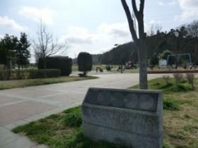 公園の撮影写真です。