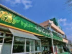 量販店の撮影写真です。
